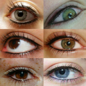 Traditional permanent eyeliner,nail studio and beauty bassonia